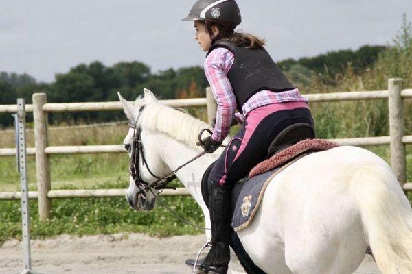 Fermés au public depuis le 15 mars, poney-clubs et centres équestres se retrouvent privés de recettes mais doivent assumer l'entretien de leurs chevaux.