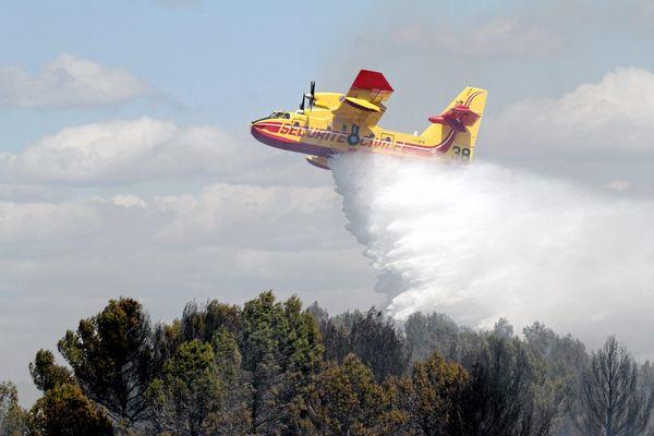 Chaque été, les incendies ravagent des hectares de forêt dans la région.