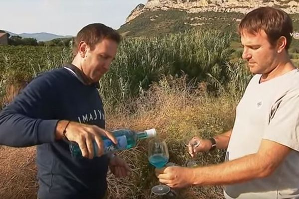 Sylvain Milanini et son frère Bruno, créateurs du vin bleu Imajyne