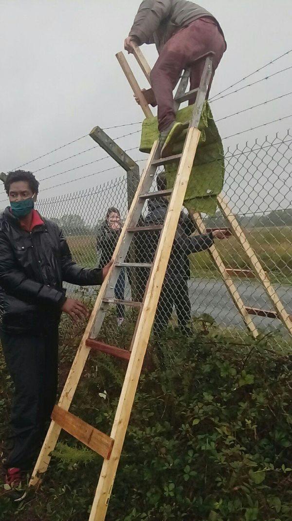 Les militants se sont introduits sur le tarmac en passant par dessus l'enceinte grillagée.