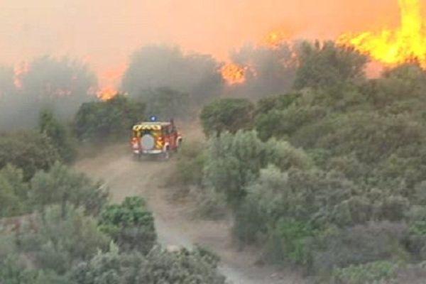 Les hommes du feu ont tenté de protéger des lignes à haute tension menacées par les flammes. Millas le 17 septembre 2014.