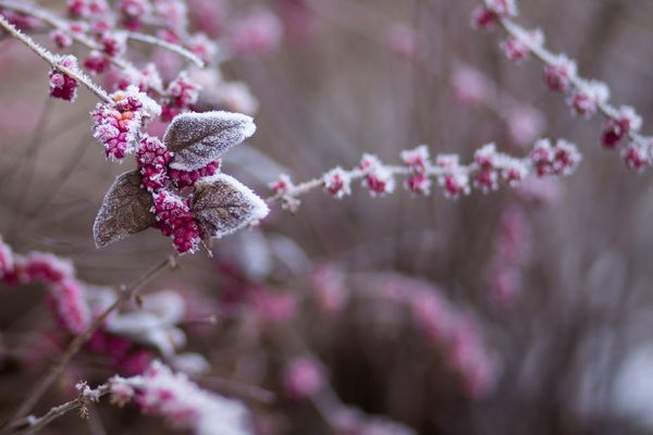Le froid sera mordant entre lundi et mercredi.
