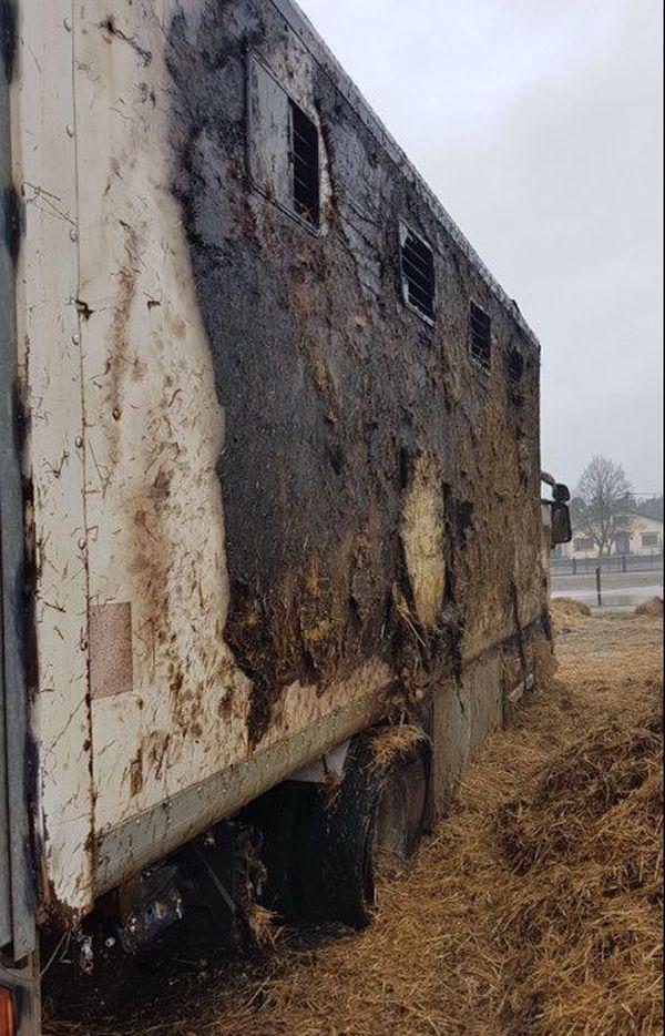 Le camion qui sert à transporter les chevaux a lui aussi été détruit