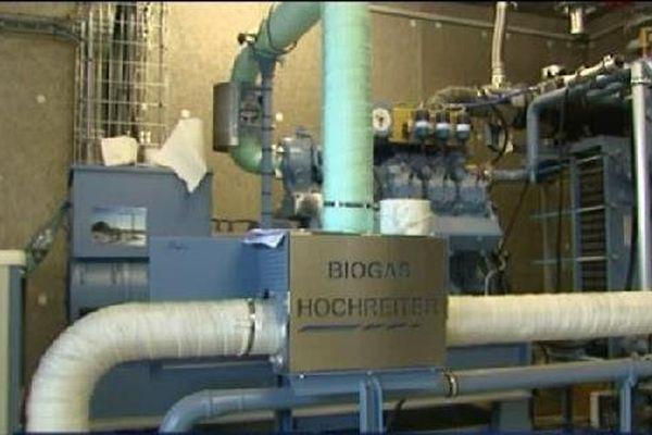 Le biogaz est transformé en électricité.