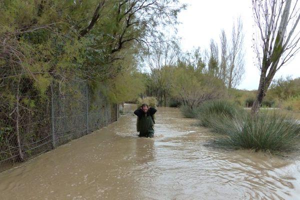 Un soigneur au travail à la réserve africaine de Sigean après les inondations novembre 2014