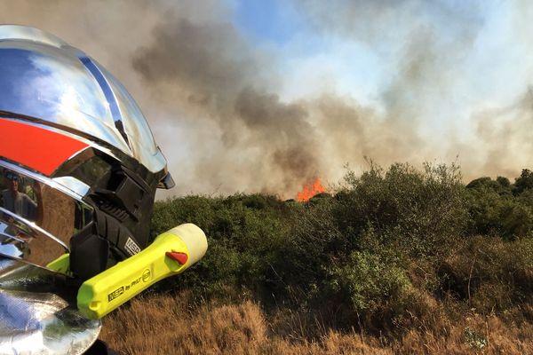 Les sapeurs-pompiers sont intervenus pour un feu de forêt. Photo d'illustration.