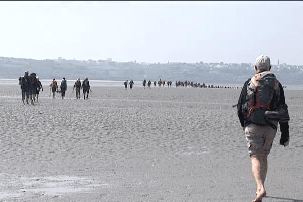 La traversée de la baie d'Hillion à marée basse