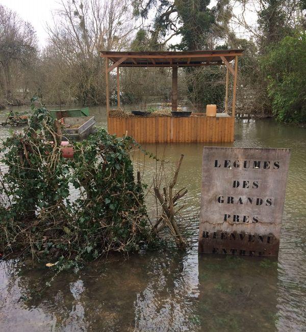 L'eau a recouvert les champs aux abords de la Seine