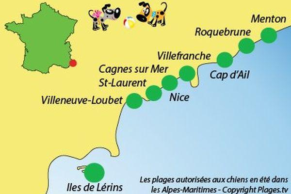 Cartographie des plages autorisées aux chiens dans les Alpes-Maritimes.