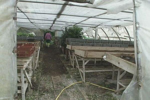 Sur le marché de Bavans, on achète les produits bio directement sur l'exploitation.