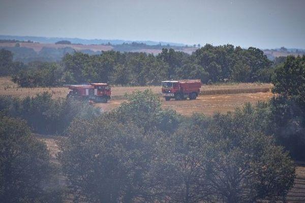 Un feu de chaume a détruit 10 hectares sur la commune de Mirandol (81)