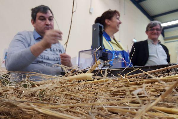 Les travailleurs handicapés de l'Esat de la Ferté-Macé collaborent à la fabrication de pailles en pailles, pour mettre fin au plastique à usage unique