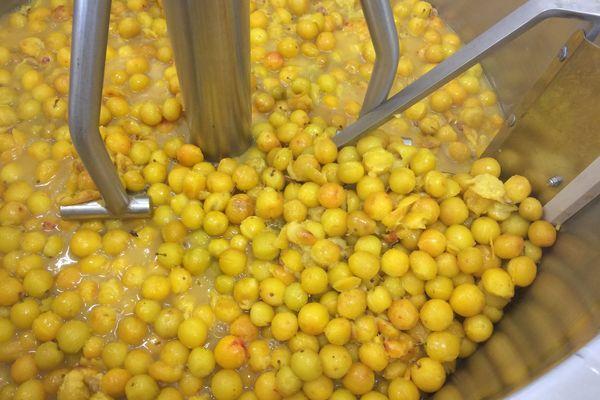 Le laboratoire tourne à plein régime en cette fin d'été. Ici 160 kg de mirabelles sont transformées en desserts et confitures