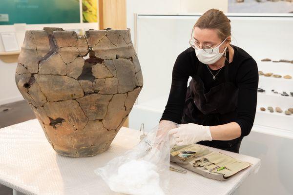 Royan : le vase de Peu-Richard, vieux de 5.000 ans, est en restauration