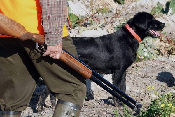Un chasseur avec son chien - Photo d'illustration