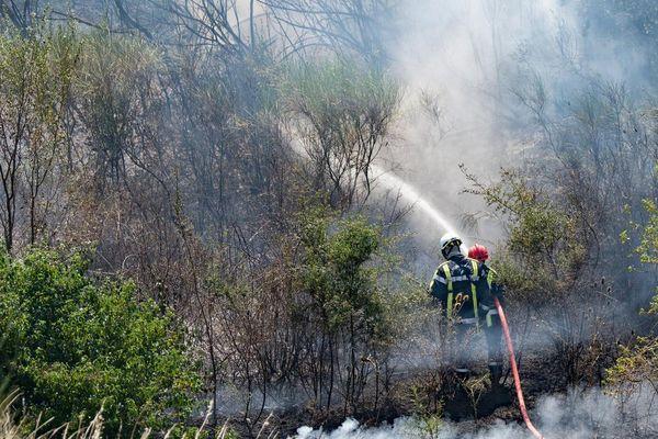 illustration feu de forêt dans le Gard - 27 juillet 2017