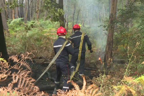 """Les pompiers doivent sillonner l'ensemble de la zone brûlée afin de """"noyer"""" les derniers points chauds et éviter toute reprise du feu"""