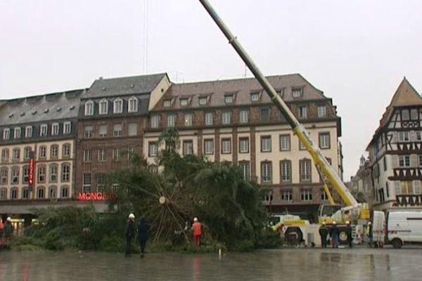 Strasbourg : le temps du découpage du sapin