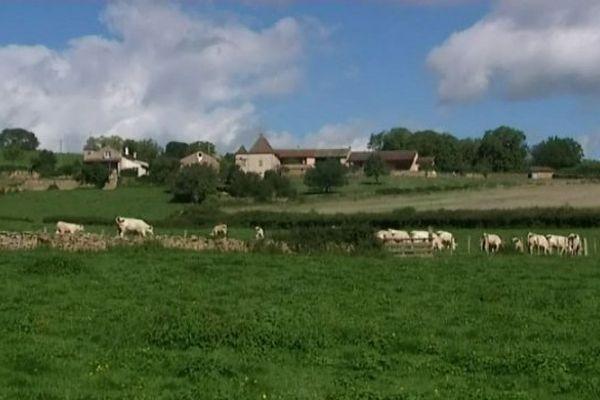 Le pays Charolais, en Saône-et-Loire