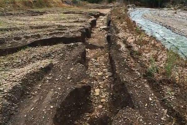 En septembre dernier, le ciel s'abat sur la haute vallée de l'Hérault. De terribles inondations ravagent les parcelles de producteurs d'oignon doux des Cévennes. Aujourd'hui, une partie de la filière peine à se relever. D'autantque les aides gouvernementales ne sont toujours pas arrivées.