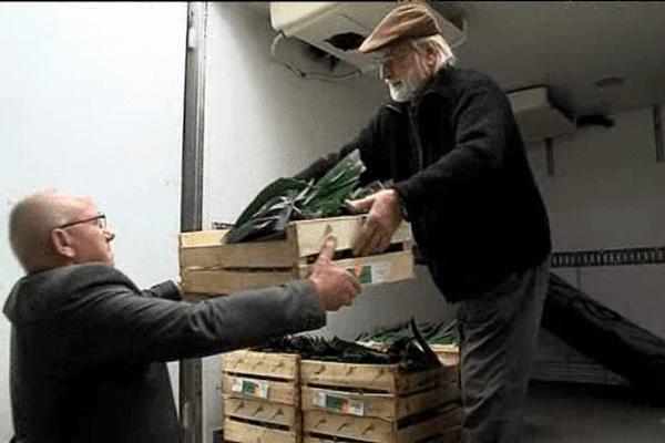 Des agriculteurs manchois ont fait don de plus d'une tonnes de légumes aux Restos du cœur et à la Banque alimentaire ce mercredi à Saint-Lô