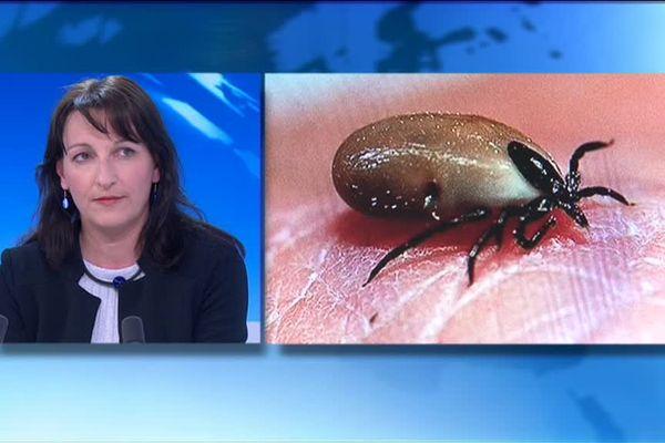 Sandrine Capizzi est maître de conférence en parasitologie.