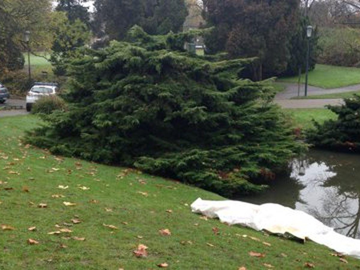 Roubaix : un corps retrouvé, flottant, dans le parc Barbieux