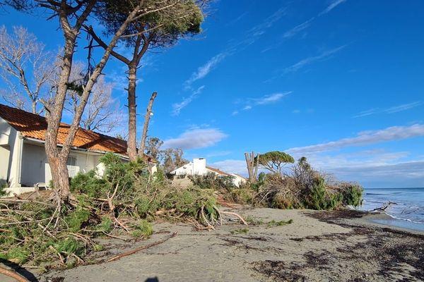 À Lucciana, sur le cordon lagunaire de la Marana, une dizaine de maisons sont menacées par l'érosion du littoral.