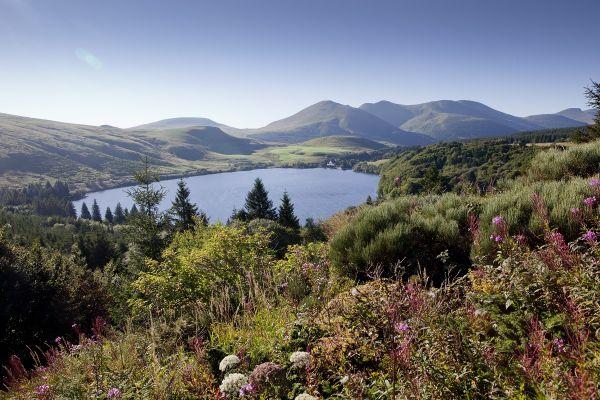 Le plateau du Guéry (Puy-de-Dôme) offre des paysages variés et est très apprécié des touristes et promeneurs.