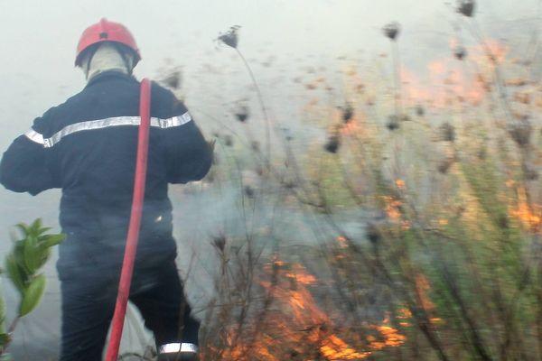 ILLUSTRATION - Le risque d'incendie reste élevé en Corse