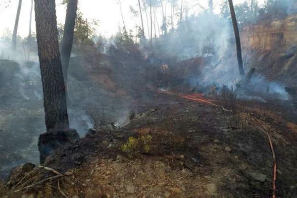 Le feu a ravagé 10 ha de végétation près de Générargues dans le Gard. Août 2015.