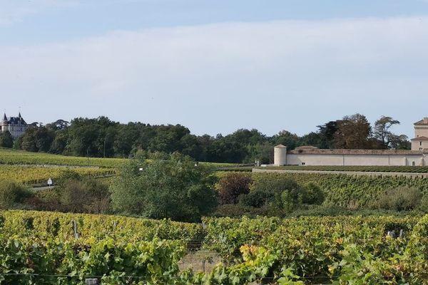 A voir ce week-end, les châteaux Rayne-Vigneau et Lafaurie-Peyraguey, 1ers crus classés de Sauternes