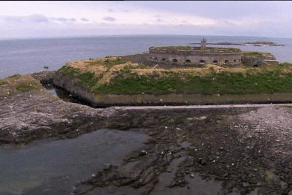 Le groupe ornithologique normand s'inquiètent des projets de l'association des amis de l'Île du large quant à l'avenir de l'île.