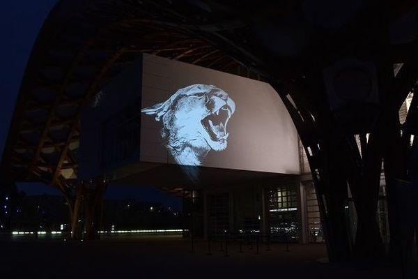 Julien Nonnon, artiste, a décidé de projeter des animaux en voie d'extinction sur les murs de six monuments messins, du 26 avril au 10 mai.