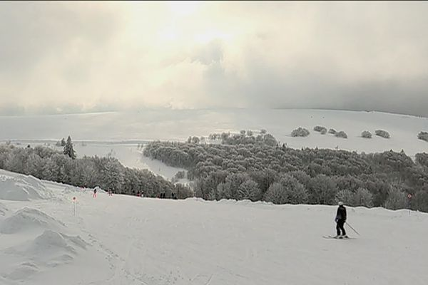L'or blanc des Vosges est-il menacé par le réchauffement climatique ?