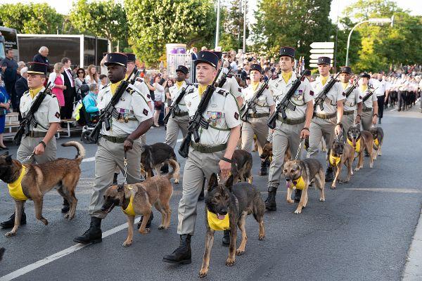Le 132ème Régiment d'Infanterie Cynotechnique remporte toujours beaucoup de succès.
