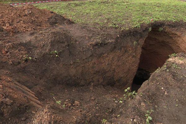 Le cheval est tombé dans une cavité minière.