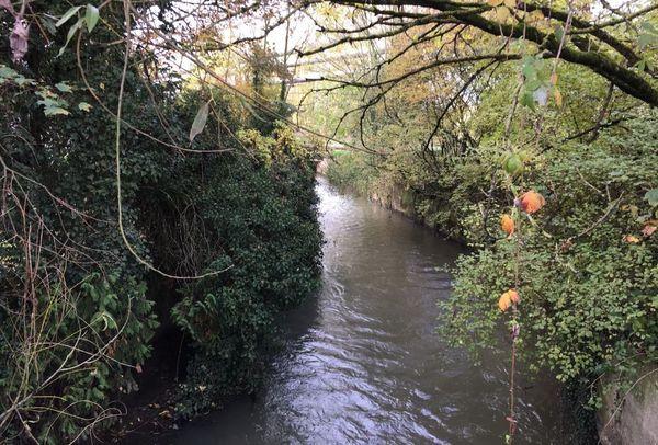 Une vanne-guillotine sera posée au point de rejet F16, où sont déversées les eaux usées de la cokerie d'ArcelorMittal à Florange.