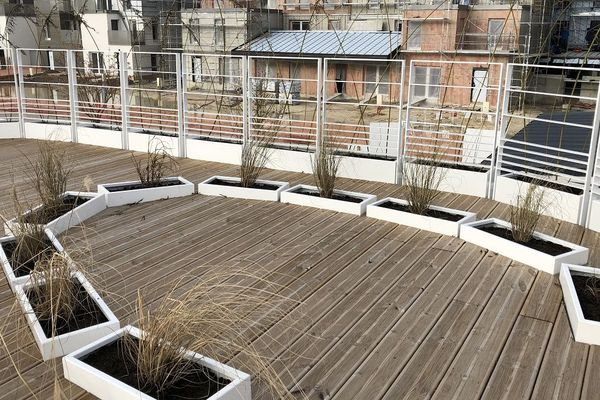 La terrasse sur le toit de la maison Asie est entourée de bambous.