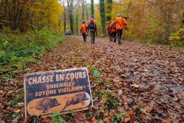 En Auvergne-Rhône-Alpes, pour la saison 2021, quelques 115 200 permis de chasse ont été validés.