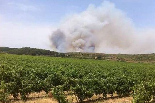 Incendie dans le secteur de Vailhan (34)
