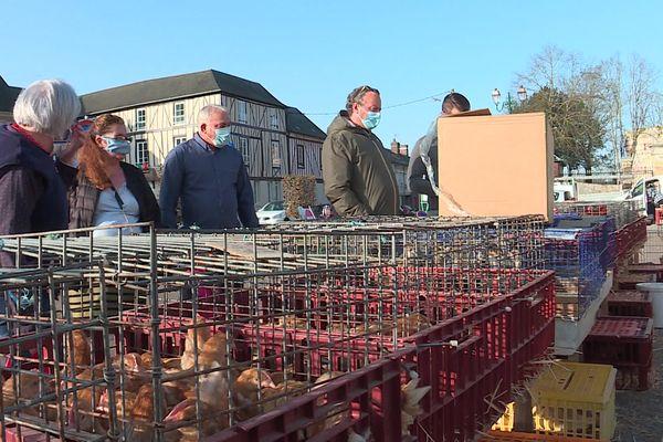 Mars 2021- Un marchand de volailles vivantes sur le marché du Neubourg (Eure)