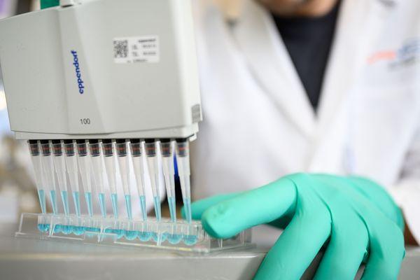 """Illustration. Selon le chercheur marseillais Bruno Canard Il y a bien des """"molécules en essai"""" contre le Covid19, issus de la recherche fondamentale sur le Sras et d'autres virus, mais """"Il y en a peu et il aurait pu y en avoir beaucoup plus""""."""