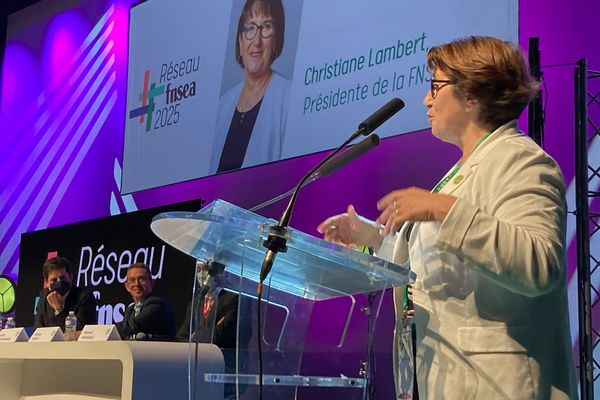 Christiane Lambert, présidente de la FNSEA, s'exprime à la tribune, jeudi 23 novembre, lors du 75e congrès de la FNSEA à Niort.