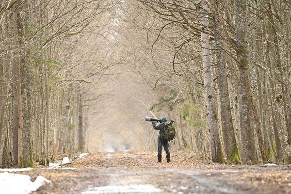 Fabien Bruggmann, en quête d'images de la faune des forêts primaires.
