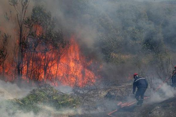 Pompiers à la lutte contre un incendie dans du gros maquis en Corse (Illustration)