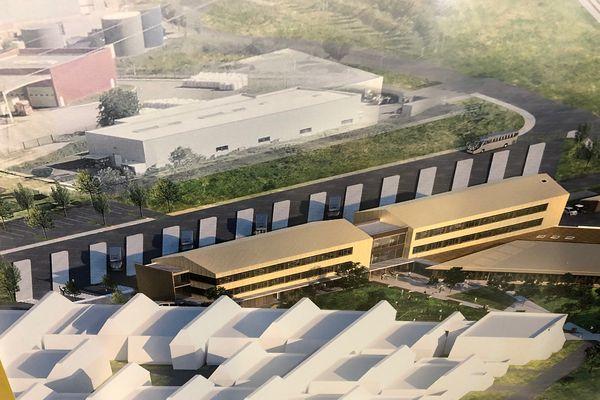 Des bâtiments plus fonctionnels, un parc avec des arbres et des espaces ombragés... Le lycée de la Plaine de l'Ain va faire peau neuve.