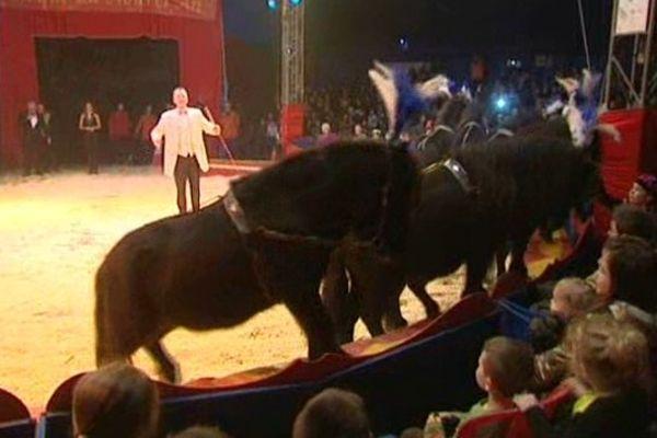 Le cirque du Nouvel an à Douai.