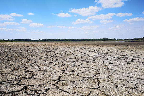 L'étang des Landes à sec (juillet 2019).