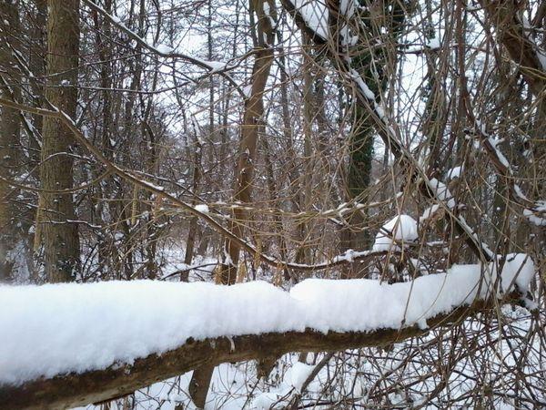 Saint-Leu-d'Esserent dans l'Oise, ce matin sous la neige